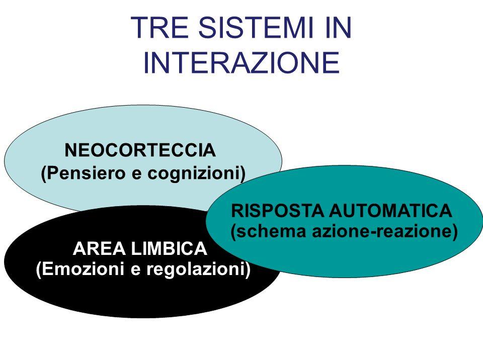 TRE SISTEMI IN INTERAZIONE NEOCORTECCIA (Pensiero e cognizioni) AREA LIMBICA (Emozioni e regolazioni) RISPOSTA AUTOMATICA (schema azione-reazione)