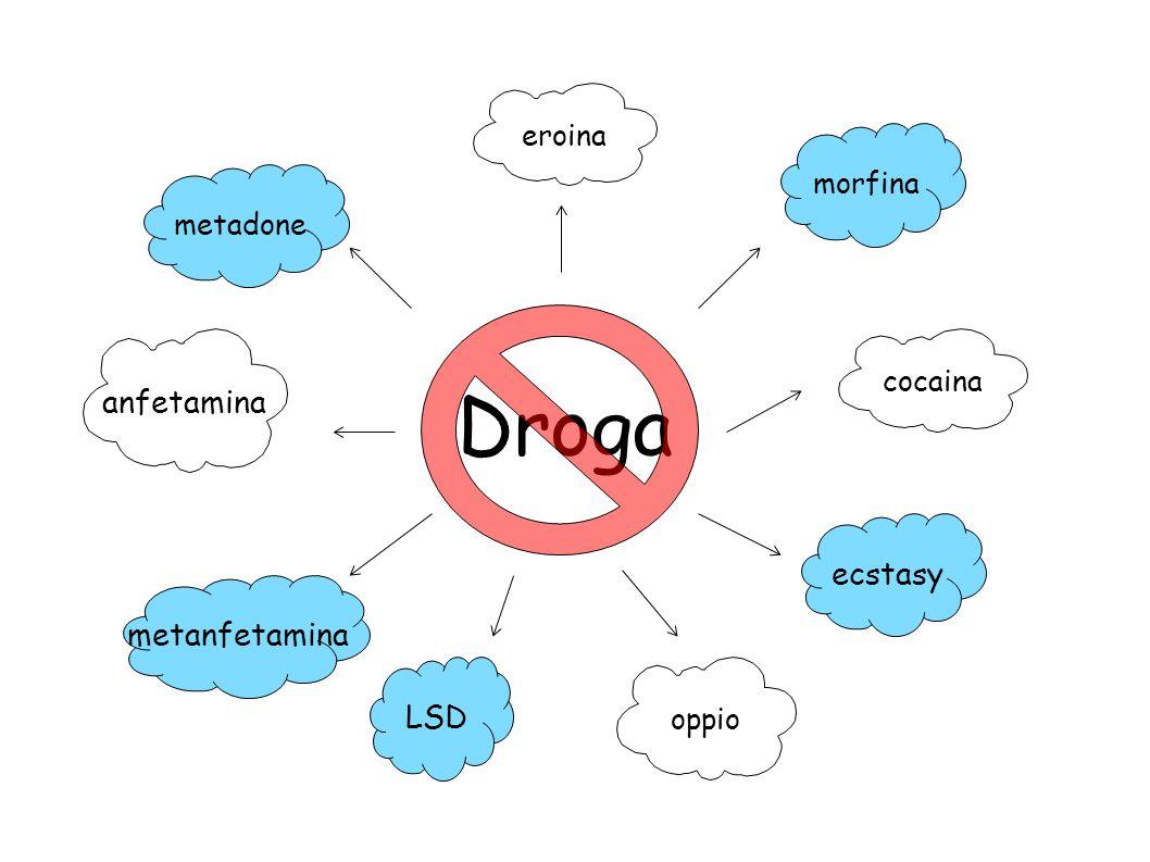 INTRODUZIONE: Ormai da anni in molti paesi europei si è sviluppata la cosiddetta cultura della droga e dellalcool. Le cause che possono portare una pe