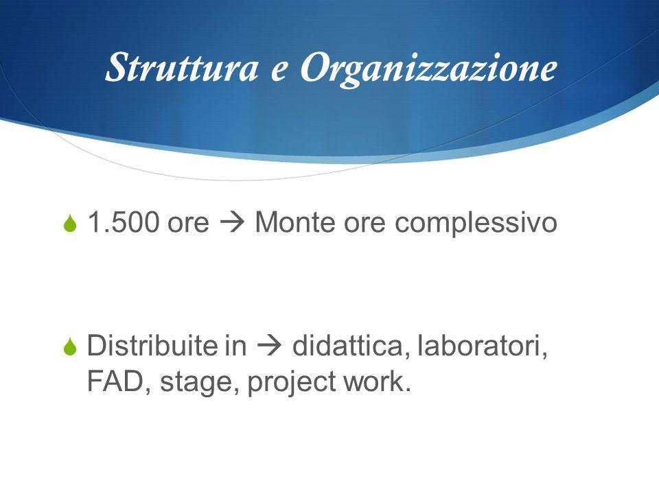 Struttura e Organizzazione 1.500 ore Monte ore complessivo Distribuite in didattica, laboratori, FAD, stage, project work.