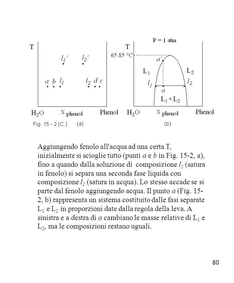 80 Aggiungendo fenolo all acqua ad una certa T, inizialmente si scioglie tutto (punti a e b in Fig.