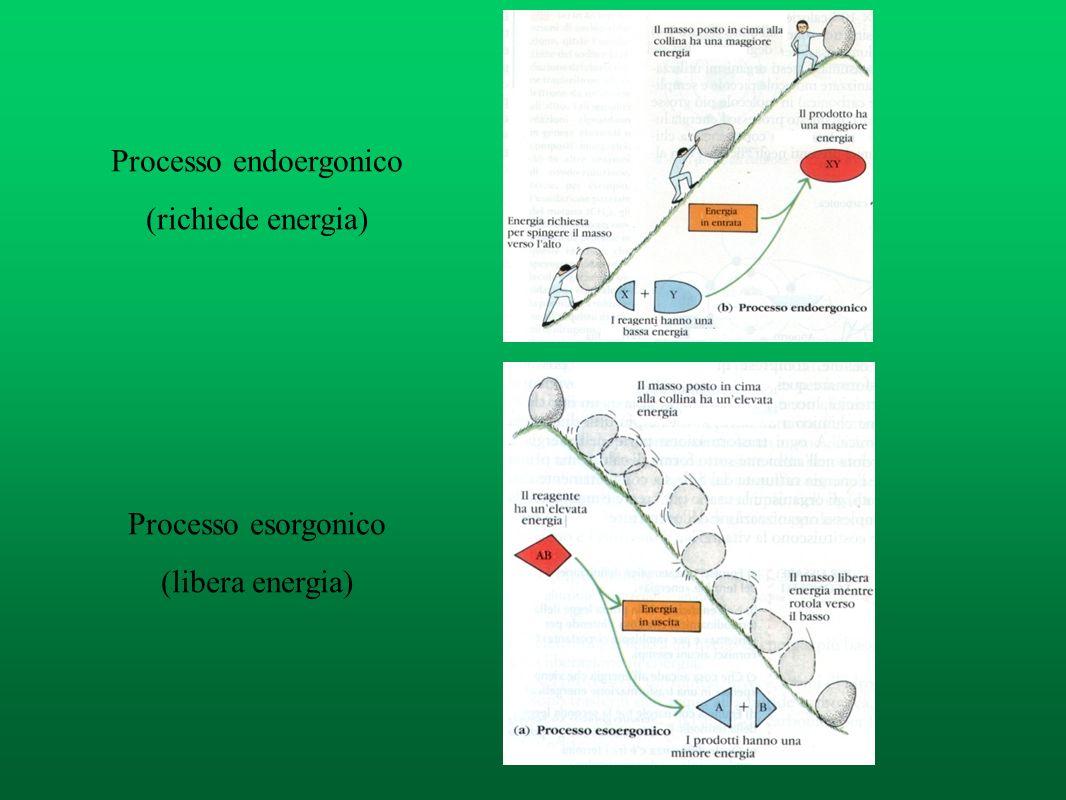 Reazioni esotermiche (spontanee) Δ H < 0 REAGENTI Legami + deboli, stabilità minore PRODOTTI Legami + forti, stabilità maggiore La reazione produce en