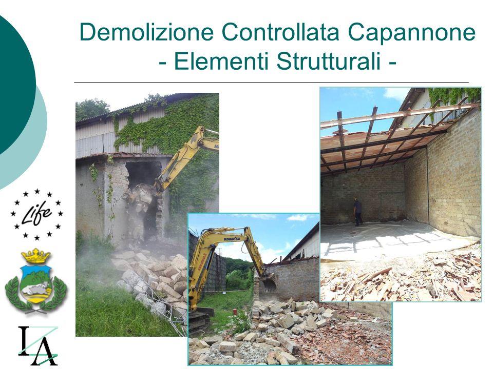 Demolizione Controllata Capannone - Elementi Strutturali -