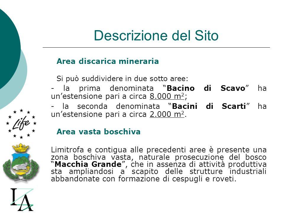 Descrizione del Sito Area discarica mineraria Si può suddividere in due sotto aree: - la prima denominata Bacino di Scavo ha unestensione pari a circa