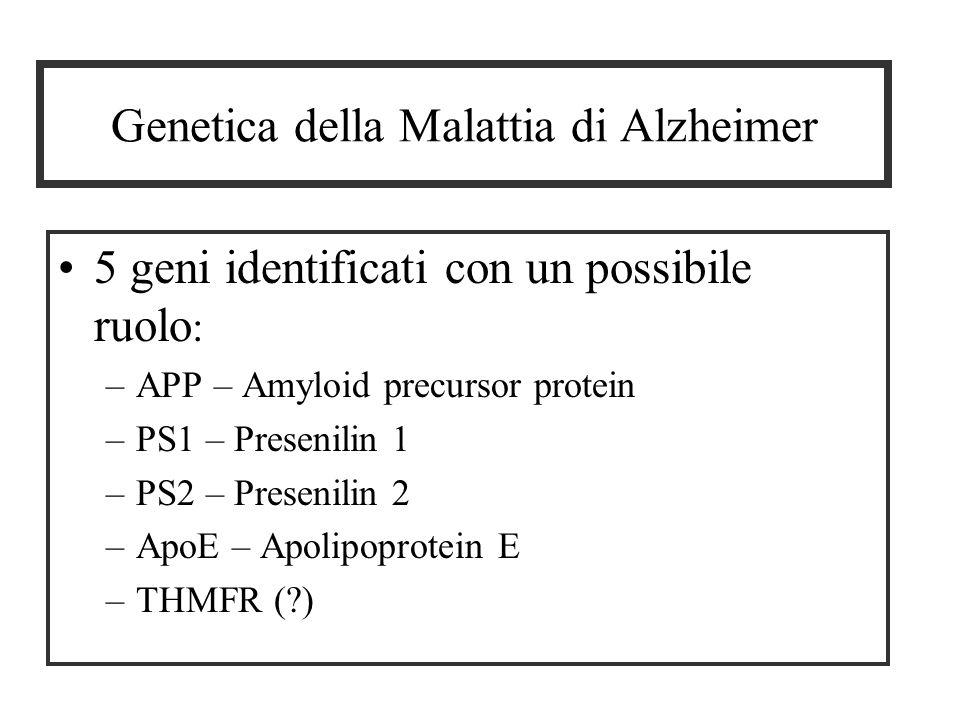 Genetica della Malattia di Alzheimer 5 geni identificati con un possibile ruolo : –APP – Amyloid precursor protein –PS1 – Presenilin 1 –PS2 – Presenilin 2 –ApoE – Apolipoprotein E –THMFR (?)