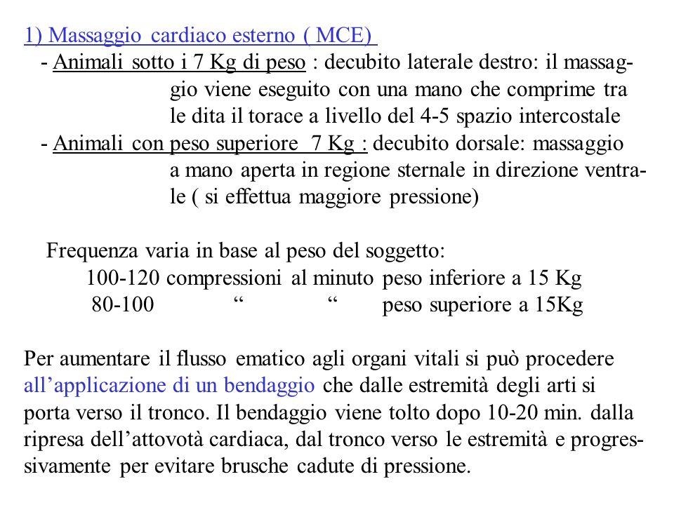 1) Massaggio cardiaco esterno ( MCE) - Animali sotto i 7 Kg di peso : decubito laterale destro: il massag- gio viene eseguito con una mano che comprim
