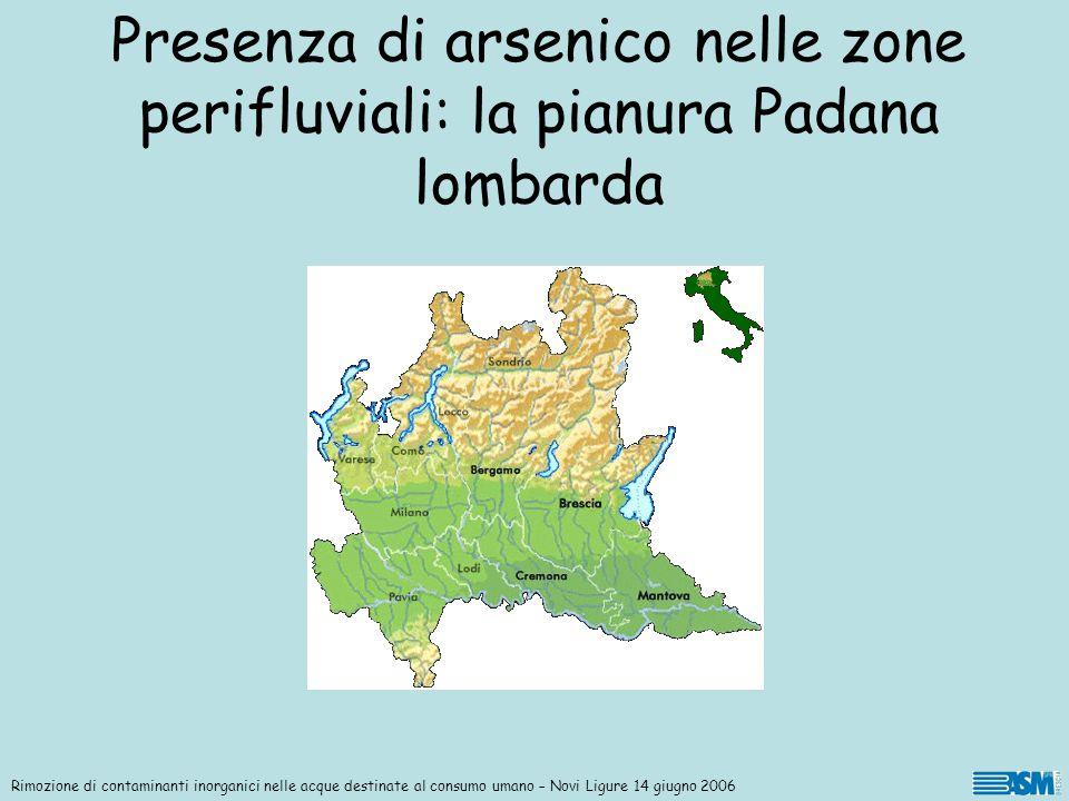 Rimozione di contaminanti inorganici nelle acque destinate al consumo umano – Novi Ligure 14 giugno 2006 Presenza di arsenico nelle zone perifluviali: