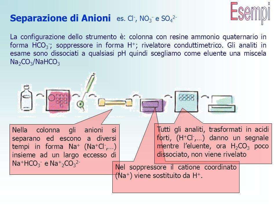 Separazione di Anioni es. Cl -, NO 3 - e SO 4 2- Nella colonna gli anioni si separano ed escono a diversi tempi in forma Na + (Na + Cl -,…) insieme ad