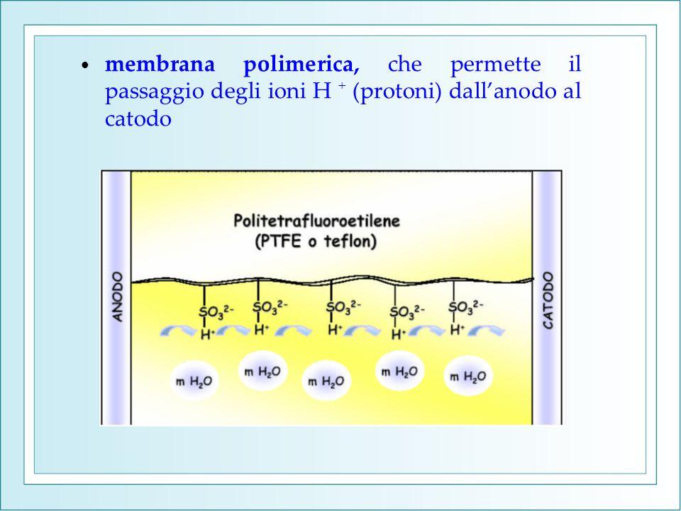 membrana polimerica, che permette il passaggio degli ioni H + (protoni) dallanodo al catodo