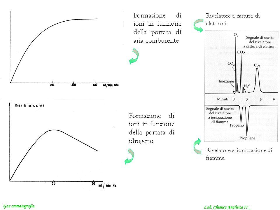 Lab. Chimica Analitica II _ Gas cromatografia Formazione di ioni in funzione della portata di aria comburente Formazione di ioni in funzione della por