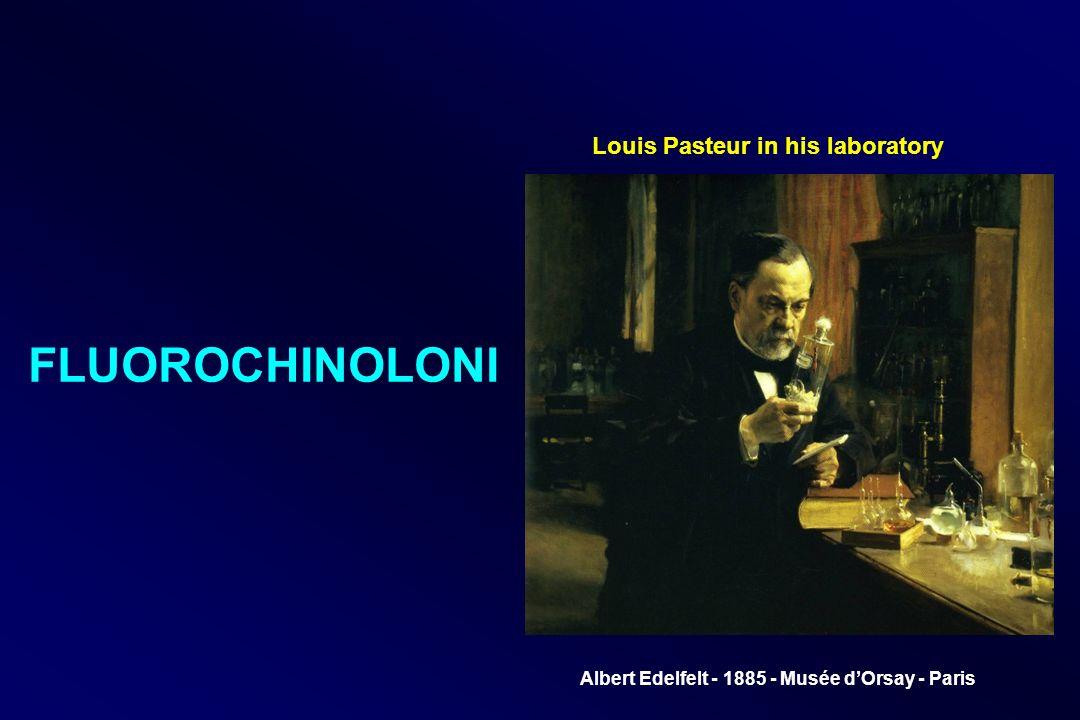 Louis Pasteur in his laboratory Albert Edelfelt - 1885 - Musée dOrsay - Paris FLUOROCHINOLONI