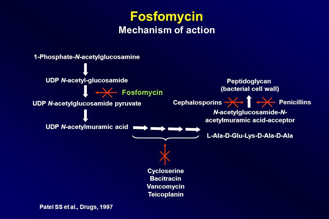 Fosfomycin Mechanism of action 1-Phosphate-N-acetylglucosamine UDP N-acetyl-glucosamide UDP N-acetylglucosamide pyruvate UDP N-acetylmuramic acid Pept
