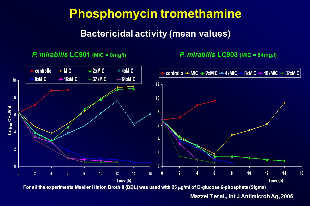 Phosphomycin tromethamine Bactericidal activity (mean values) P. mirabilis LC901 (MIC = 8mg/l) P. mirabilis LC903 (MIC = 64mg/l) Time (h) Log 10 CFU/m