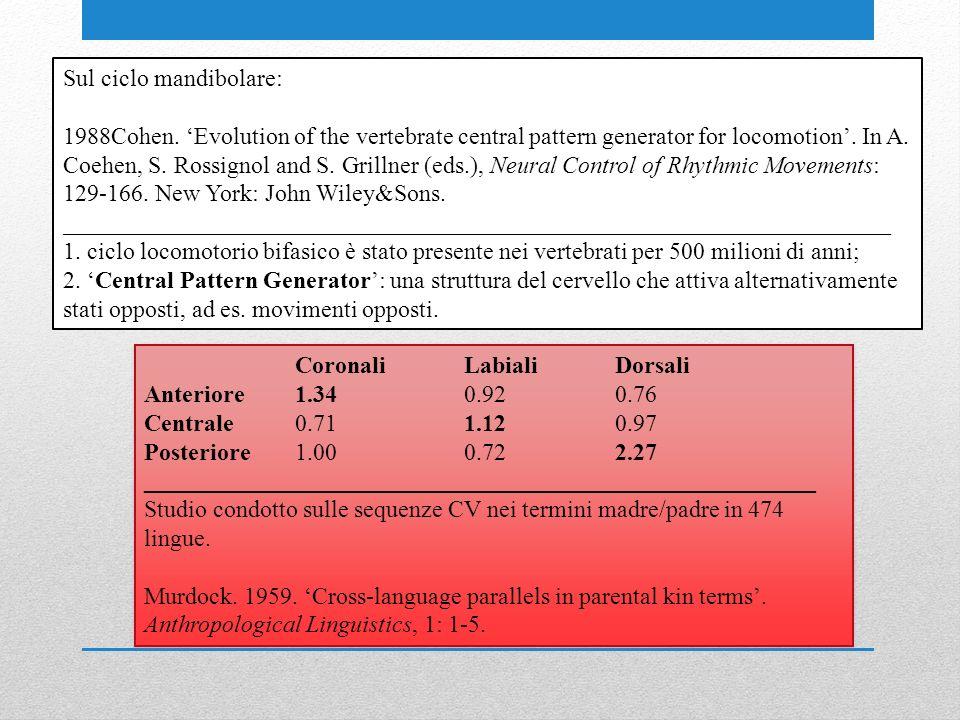 CoronaliLabialiDorsali Anteriore1.340.920.76 Centrale0.711.120.97 Posteriore1.000.722.27 ________________________________________________________ Studio condotto sulle sequenze CV nei termini madre/padre in 474 lingue.