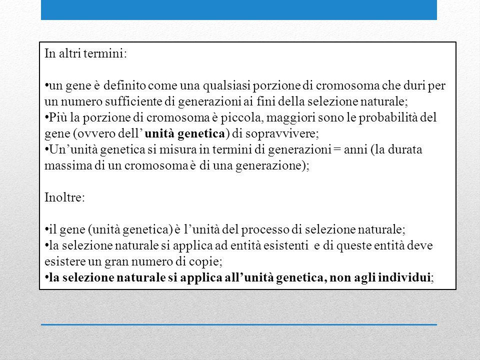 In altri termini: un gene è definito come una qualsiasi porzione di cromosoma che duri per un numero sufficiente di generazioni ai fini della selezione naturale; Più la porzione di cromosoma è piccola, maggiori sono le probabilità del gene (ovvero dell unità genetica) di sopravvivere; Ununità genetica si misura in termini di generazioni = anni (la durata massima di un cromosoma è di una generazione); Inoltre: il gene (unità genetica) è lunità del processo di selezione naturale; la selezione naturale si applica ad entità esistenti e di queste entità deve esistere un gran numero di copie; la selezione naturale si applica allunità genetica, non agli individui;