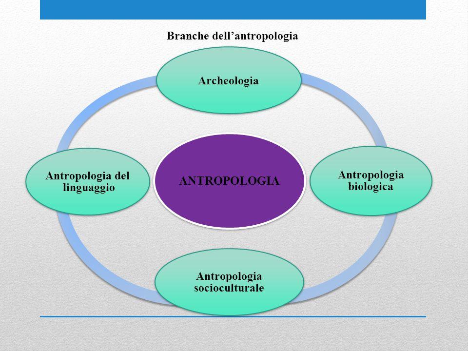 Branche dellantropologia