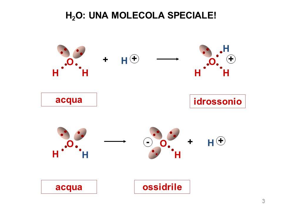 H H O + H - O H + acquaossidrile acqua idrossonio HH O + H + H O HH + 3 H 2 O: UNA MOLECOLA SPECIALE!