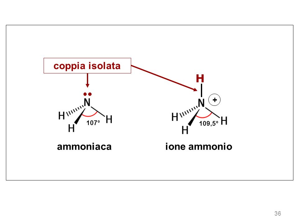 107° ammoniacaione ammonio 109,5° H + coppia isolata 36