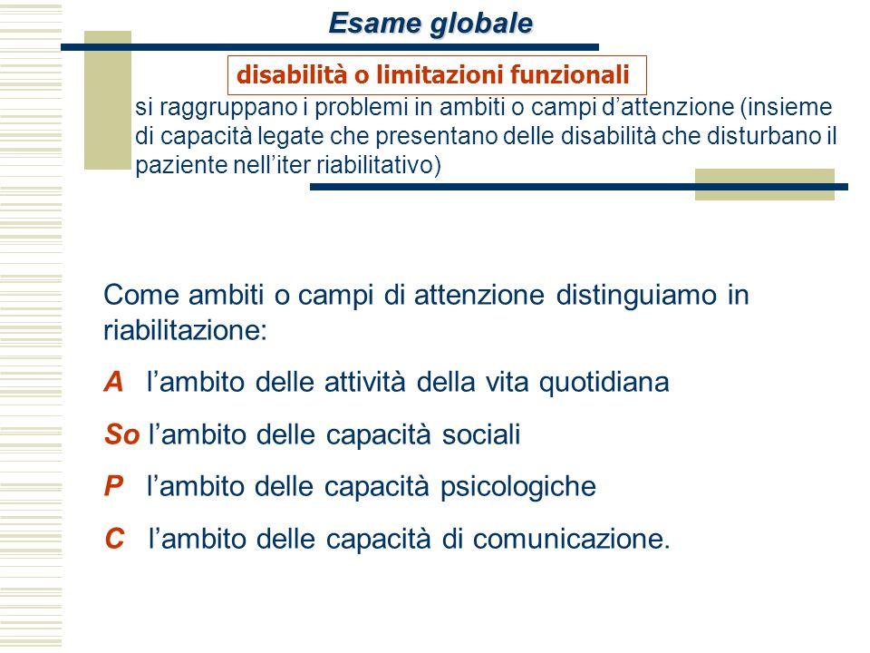 Esame globale si raggruppano i problemi in ambiti o campi dattenzione (insieme di capacità legate che presentano delle disabilità che disturbano il pa