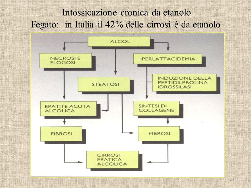 Intossicazione cronica da etanolo Fegato: in Italia il 42% delle cirrosi è da etanolo 107