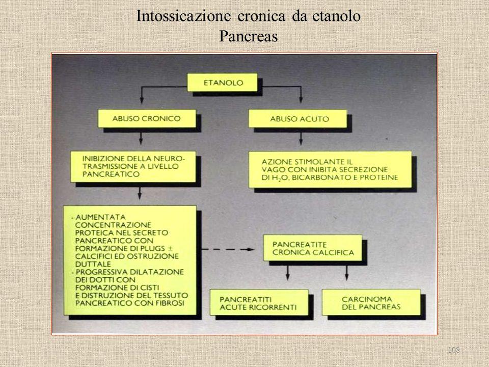 Intossicazione cronica da etanolo Pancreas 108