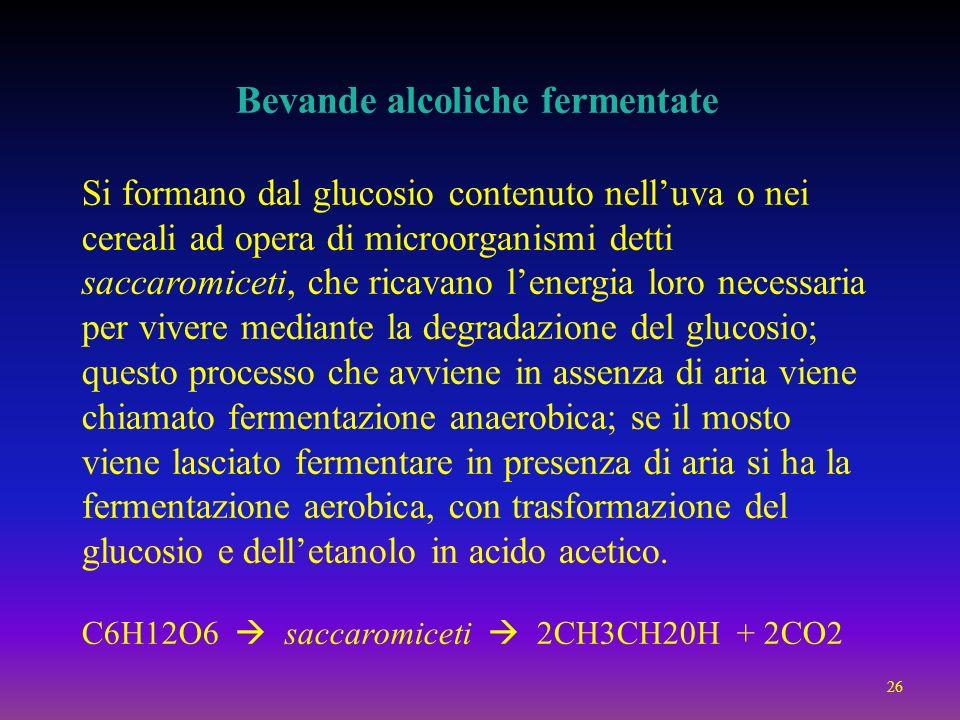 Bevande alcoliche fermentate Si formano dal glucosio contenuto nelluva o nei cereali ad opera di microorganismi detti saccaromiceti, che ricavano lene