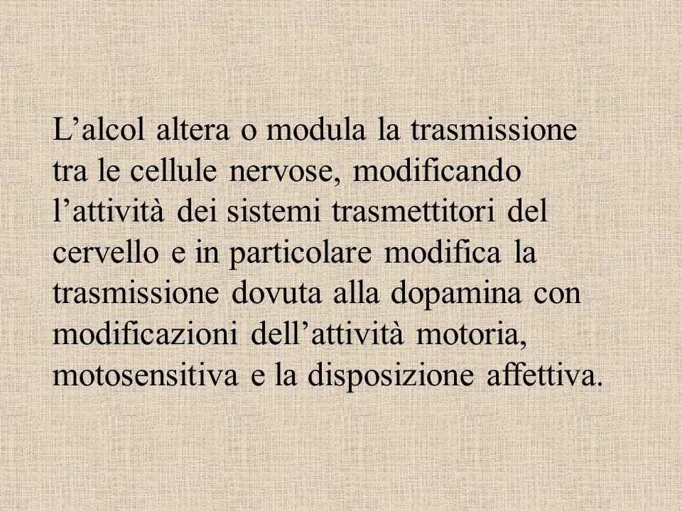Lalcol altera o modula la trasmissione tra le cellule nervose, modificando lattività dei sistemi trasmettitori del cervello e in particolare modifica