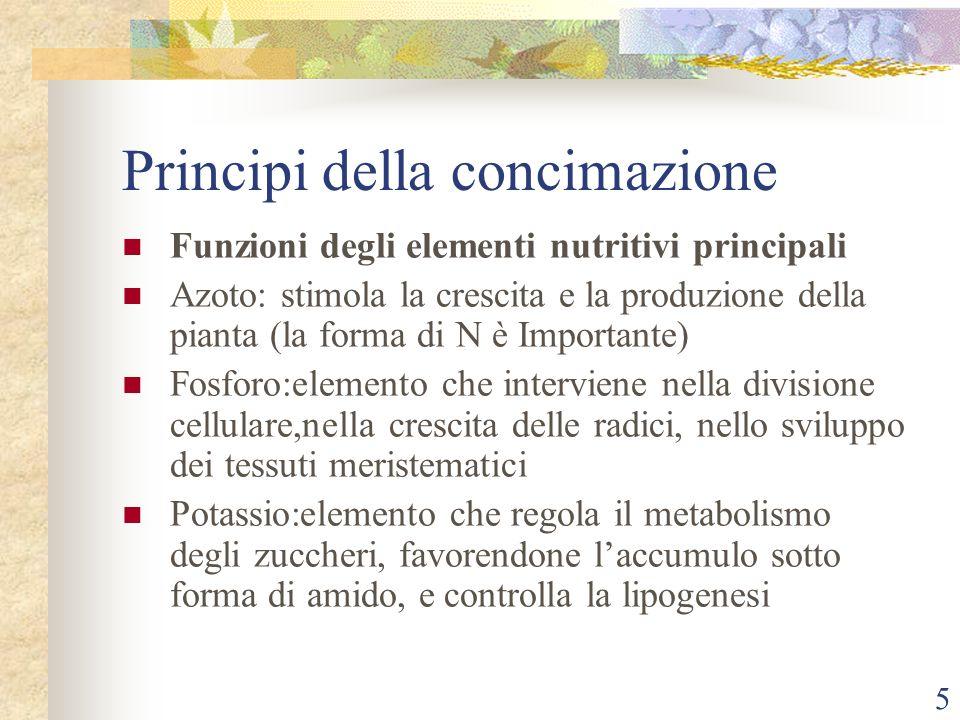 5 Principi della concimazione Funzioni degli elementi nutritivi principali Azoto: stimola la crescita e la produzione della pianta (la forma di N è Im