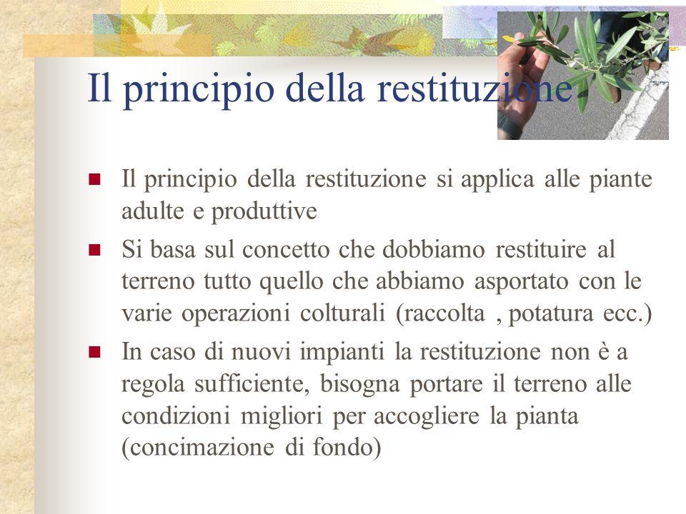 Il principio della restituzione Il principio della restituzione si applica alle piante adulte e produttive Si basa sul concetto che dobbiamo restituir