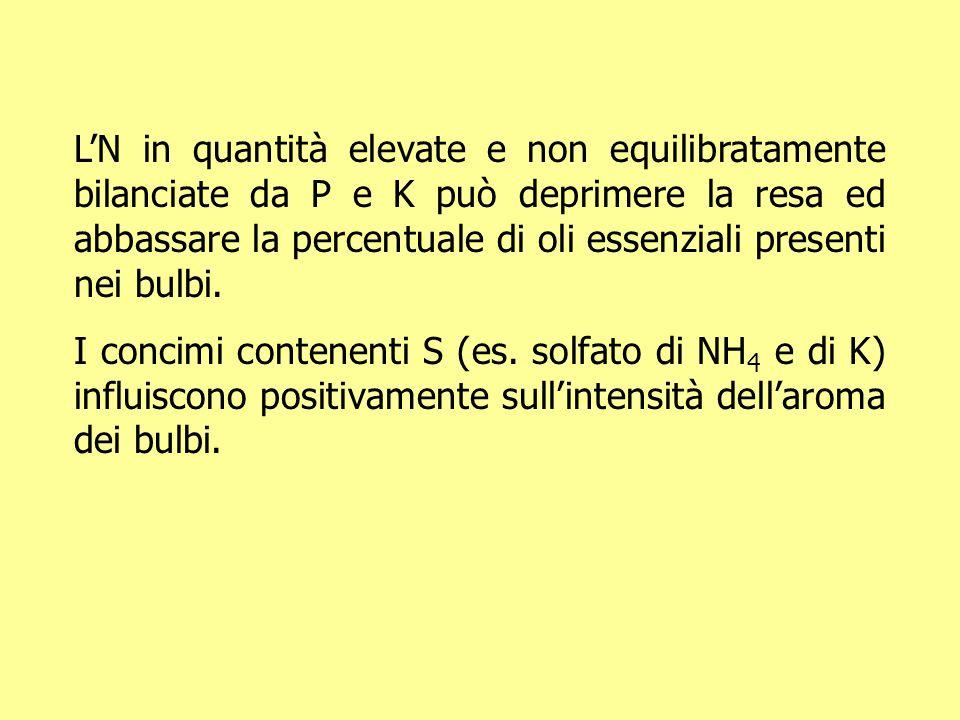 LN in quantità elevate e non equilibratamente bilanciate da P e K può deprimere la resa ed abbassare la percentuale di oli essenziali presenti nei bul