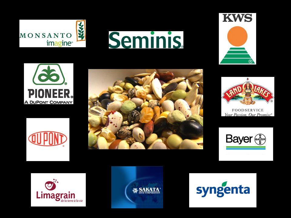 21. Accetto che la coltivazione di Organismi Geneticamente Modificati (OGM) si stabilisca nel mondo intero, permettendo così alle multinazionali agroa