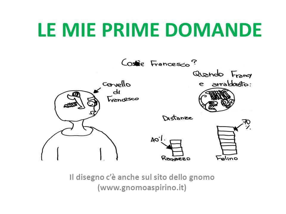 LE MIE PRIME DOMANDE Il disegno cè anche sul sito dello gnomo (www.gnomoaspirino.it)