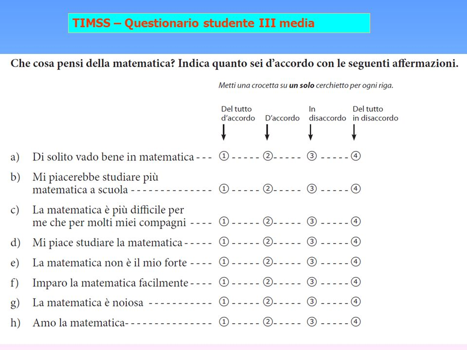 11 TIMSS – Questionario studente III media