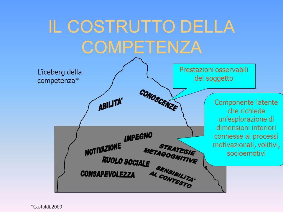 10 Componente latente: questionari studente del PISA e del TIMSS Raramente le difficoltà di uno studente sono dovute solo a carenze di conoscenze.