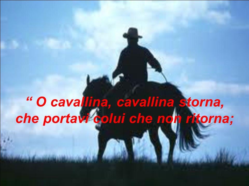 O cavallina, cavallina storna, che portavi colui che non ritorna;