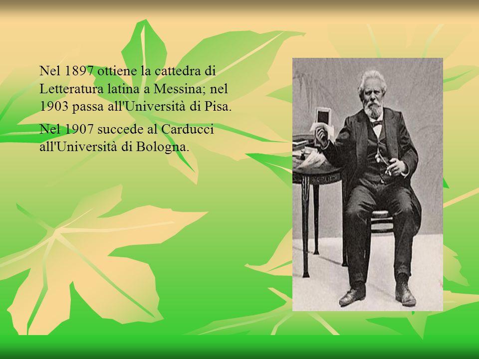 Nel 1897 ottiene la cattedra di Letteratura latina a Messina; nel 1903 passa all'Università di Pisa. Nel 1907 succede al Carducci all'Università di Bo