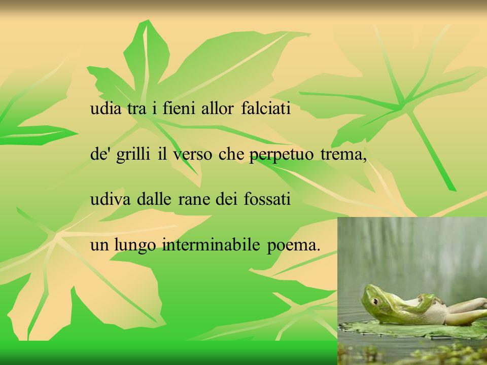 udia tra i fieni allor falciati de' grilli il verso che perpetuo trema, udiva dalle rane dei fossati un lungo interminabile poema.