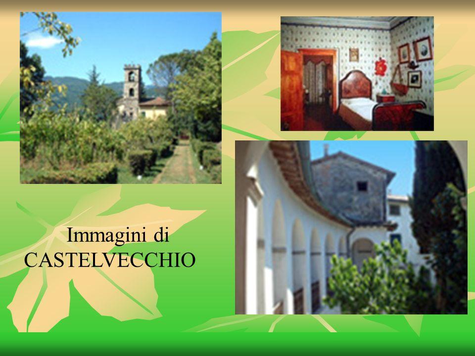 Immagini di CASTELVECCHIO