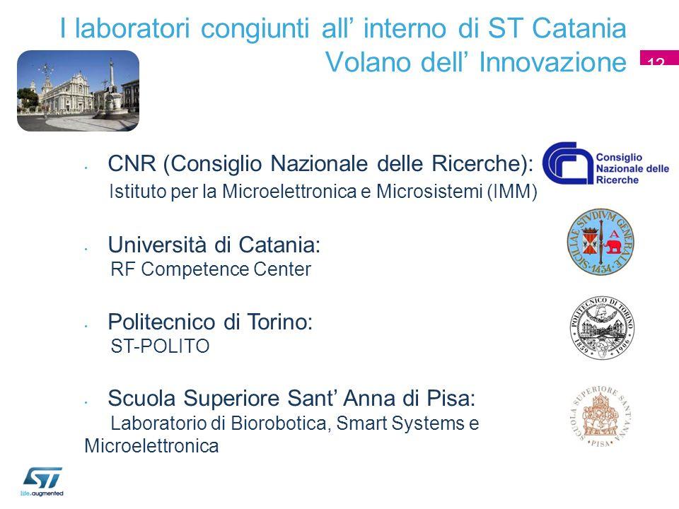 I laboratori congiunti all interno di ST Catania Volano dell Innovazione 12 CNR (Consiglio Nazionale delle Ricerche): Istituto per la Microelettronica