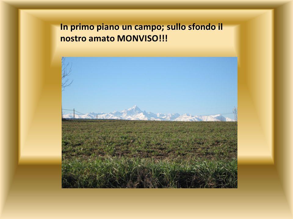 In primo piano un campo; sullo sfondo il nostro amato MONVISO!!!