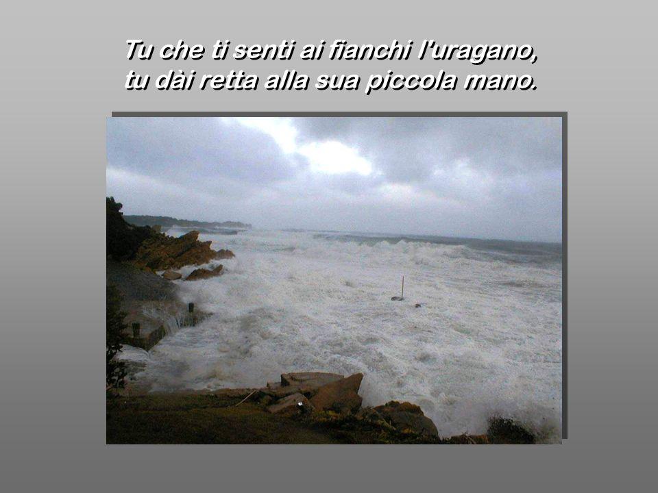 Tu che ti senti ai fianchi l'uragano, tu dài retta alla sua piccola mano. Tu che ti senti ai fianchi l'uragano, tu dài retta alla sua piccola mano.