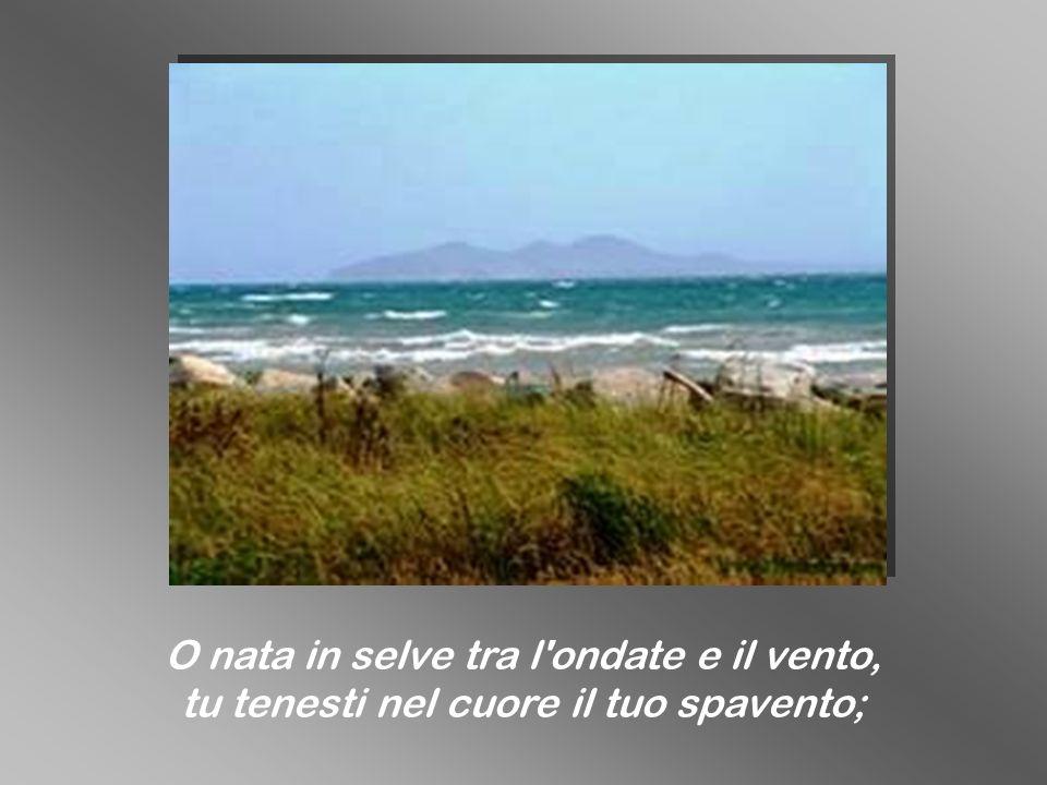 O nata in selve tra l'ondate e il vento, tu tenesti nel cuore il tuo spavento;