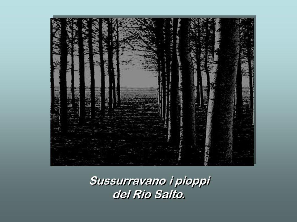 Sussurravano i pioppi del Rio Salto. Sussurravano i pioppi del Rio Salto.