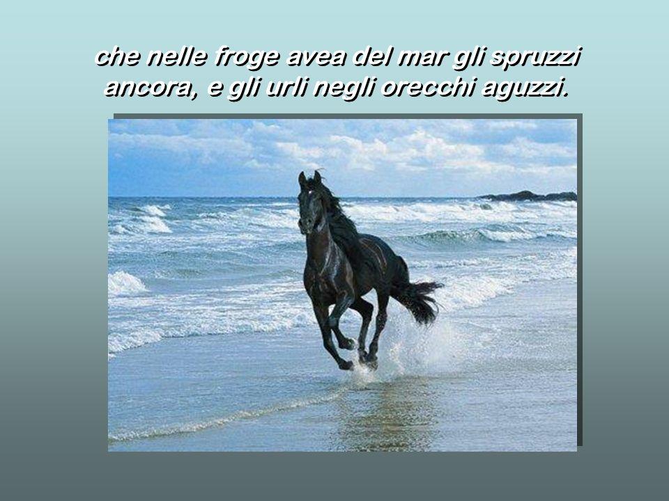 che nelle froge avea del mar gli spruzzi ancora, e gli urli negli orecchi aguzzi. che nelle froge avea del mar gli spruzzi ancora, e gli urli negli or