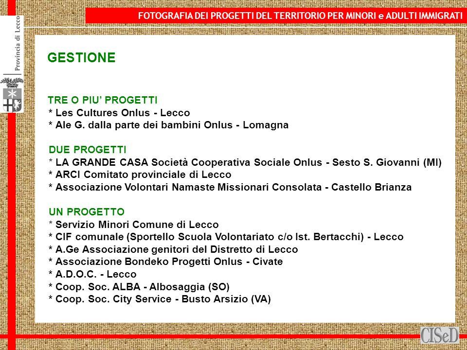 GESTIONE TRE O PIU PROGETTI * Les Cultures Onlus - Lecco * Ale G.