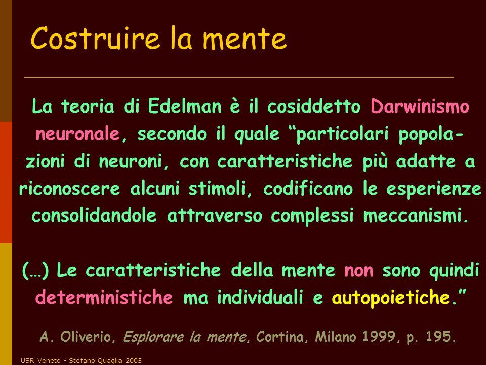 USR Veneto - Stefano Quaglia 2005 La teoria di Edelman è il cosiddetto Darwinismo neuronale, secondo il quale particolari popola- zioni di neuroni, co