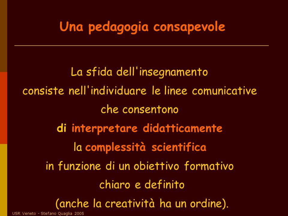 USR Veneto - Stefano Quaglia 2005 La sfida dell'insegnamento consiste nell'individuare le linee comunicative che consentono di interpretare didatticam