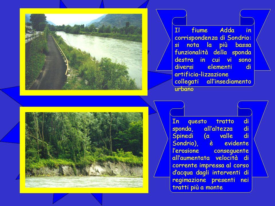Queste immagini, che ritraggono il fiume Adda da Piateda a Cedrasco, evidenziano la discreta funzionalità che caratterizza il fiume in questo tratto.
