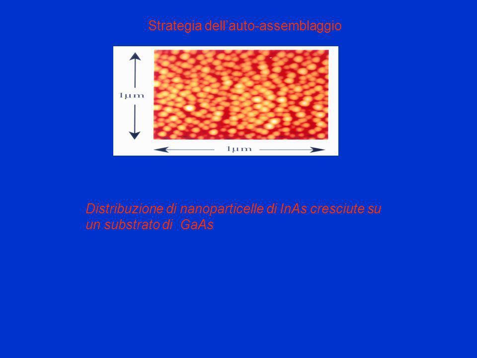 Strategia dellauto-assemblaggio Distribuzione di nanoparticelle di InAs cresciute su un substrato di GaAs