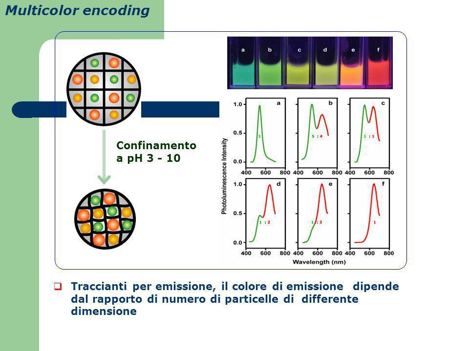 Multicolor encoding Traccianti per emissione, il colore di emissione dipende dal rapporto di numero di particelle di differente dimensione Confinament