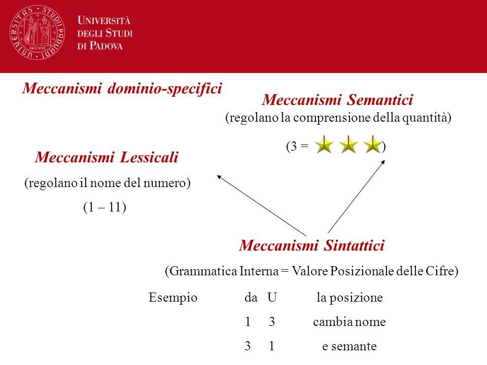 Meccanismi dominio-specifici Meccanismi Semantici (regolano la comprensione della quantità) (3 = ) Meccanismi Lessicali (regolano il nome del numero)